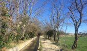 Trail Walk PERPIGNAN - 66 PERPIGNAN - autour des mas Du petit et du grand Bresson - Photo 4