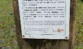 Randonnée Marche Gesves - GESVES (Surhuy) - Photo 5