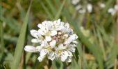 Randonnée Marche Plombières - Plombière. Natura 2000, des sites qui valent le détour. Lg2 - Photo 6