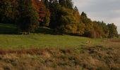 Randonnée Marche Libramont-Chevigny - 11. Promenade non balisée au départ du village de Rondu - Photo 1