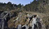 Randonnée Marche Couvin - Randonnée géologique - Photo 1