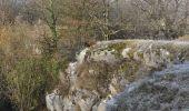 Randonnée Marche Couvin - Randonnée géologique - Photo 3