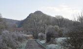 Randonnée Marche Couvin - Randonnée géologique - Photo 9