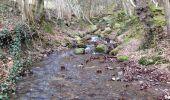 Trail Walk Aywaille - Petite remontée du Ninglispo - Photo 12