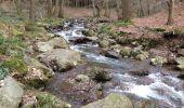 Trail Walk Aywaille - Petite remontée du Ninglispo - Photo 11