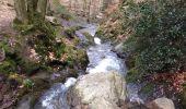Trail Walk Aywaille - Petite remontée du Ninglispo - Photo 8