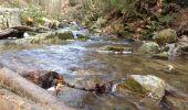 Trail Walk Aywaille - Petite remontée du Ninglispo - Photo 6