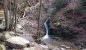 Trail Walk Aywaille - Petite remontée du Ninglispo - Photo 5