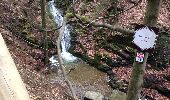 Trail Walk Aywaille - Petite remontée du Ninglispo - Photo 4