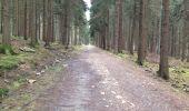 Trail Walk Aywaille - Petite remontée du Ninglispo - Photo 3