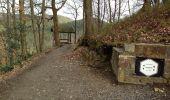 Trail Walk Aywaille - Petite remontée du Ninglispo - Photo 2