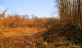 Trail Walk VILLERS-COTTERETS - en forêt de Retz_43_la laie des Pots_1 - Photo 121