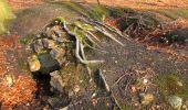 Trail Walk VILLERS-COTTERETS - en forêt de Retz_43_la laie des Pots_1 - Photo 43
