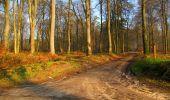 Trail Walk VILLERS-COTTERETS - en forêt de Retz_43_la laie des Pots_1 - Photo 27