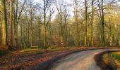 Trail Walk VILLERS-COTTERETS - en forêt de Retz_43_la laie des Pots_1 - Photo 23