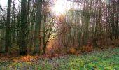 Trail Walk VILLERS-COTTERETS - en forêt de Retz_43_la laie des Pots_1 - Photo 8