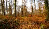 Trail Walk VILLERS-COTTERETS - en forêt de Retz_43_la laie des Pots_1 - Photo 166