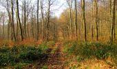 Trail Walk VILLERS-COTTERETS - en forêt de Retz_43_la laie des Pots_1 - Photo 88