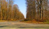 Trail Walk VILLERS-COTTERETS - en forêt de Retz_43_la laie des Pots_1 - Photo 80
