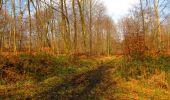 Trail Walk VILLERS-COTTERETS - en forêt de Retz_43_la laie des Pots_1 - Photo 147