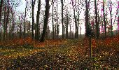 Trail Walk VILLERS-COTTERETS - en forêt de Retz_43_la laie des Pots_1 - Photo 170