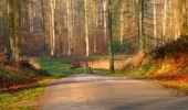 Trail Walk VILLERS-COTTERETS - en forêt de Retz_43_la laie des Pots_1 - Photo 17