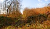 Trail Walk VILLERS-COTTERETS - en forêt de Retz_43_la laie des Pots_1 - Photo 120