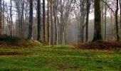 Trail Walk VILLERS-COTTERETS - en forêt de Retz_43_la laie des Pots_1 - Photo 13