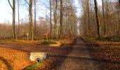 Trail Walk VILLERS-COTTERETS - en forêt de Retz_43_la laie des Pots_1 - Photo 32