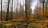 Trail Walk VILLERS-COTTERETS - en forêt de Retz_43_la laie des Pots_1 - Photo 72