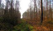 Trail Walk VILLERS-COTTERETS - en forêt de Retz_43_la laie des Pots_1 - Photo 81