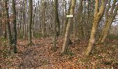 Trail Walk VILLERS-COTTERETS - en forêt de Retz_43_la laie des Pots_1 - Photo 190