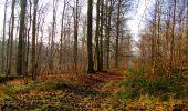 Trail Walk VILLERS-COTTERETS - en forêt de Retz_43_la laie des Pots_1 - Photo 75