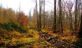 Trail Walk VILLERS-COTTERETS - en forêt de Retz_43_la laie des Pots_1 - Photo 73