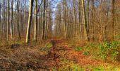 Trail Walk VILLERS-COTTERETS - en forêt de Retz_43_la laie des Pots_1 - Photo 83