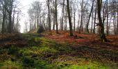 Trail Walk VILLERS-COTTERETS - en forêt de Retz_43_la laie des Pots_1 - Photo 64