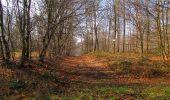 Trail Walk VILLERS-COTTERETS - en forêt de Retz_43_la laie des Pots_1 - Photo 71
