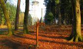Trail Walk VILLERS-COTTERETS - en forêt de Retz_43_la laie des Pots_1 - Photo 38