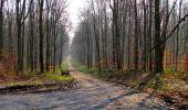 Trail Walk VILLERS-COTTERETS - en forêt de Retz_43_la laie des Pots_1 - Photo 99