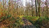 Trail Walk VILLERS-COTTERETS - en forêt de Retz_43_la laie des Pots_1 - Photo 119