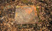 Trail Walk VILLERS-COTTERETS - en forêt de Retz_43_la laie des Pots_1 - Photo 155