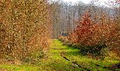 Trail Walk VILLERS-COTTERETS - en forêt de Retz_43_la laie des Pots_1 - Photo 137