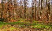 Trail Walk VILLERS-COTTERETS - en forêt de Retz_43_la laie des Pots_1 - Photo 96