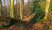 Trail Walk VILLERS-COTTERETS - en forêt de Retz_43_la laie des Pots_1 - Photo 29