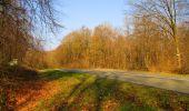 Trail Walk VILLERS-COTTERETS - en forêt de Retz_43_la laie des Pots_1 - Photo 79