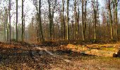 Trail Walk VILLERS-COTTERETS - en forêt de Retz_43_la laie des Pots_1 - Photo 26