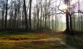 Trail Walk VILLERS-COTTERETS - en forêt de Retz_43_la laie des Pots_1 - Photo 12