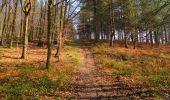Trail Walk VILLERS-COTTERETS - en forêt de Retz_43_la laie des Pots_1 - Photo 92