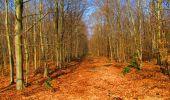 Trail Walk VILLERS-COTTERETS - en forêt de Retz_43_la laie des Pots_1 - Photo 78