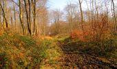 Trail Walk VILLERS-COTTERETS - en forêt de Retz_43_la laie des Pots_1 - Photo 74